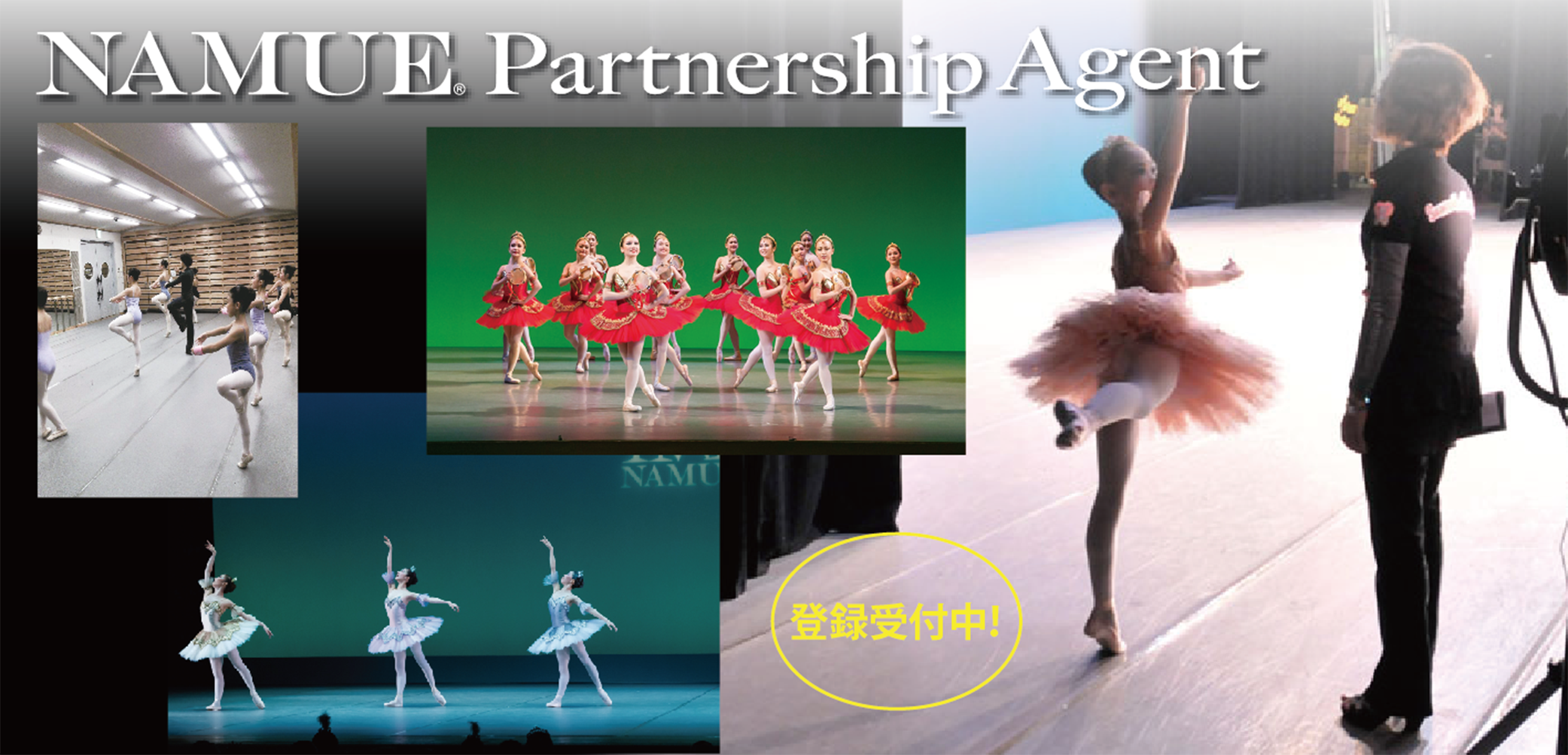 PartnerShipAgent
